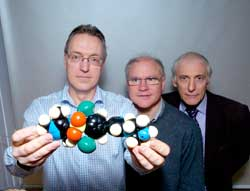 photo of left to right: Profs Paul Wyatt, Michael Ferguson and Alan Fairlamb